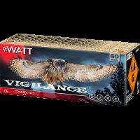 Vigilance box